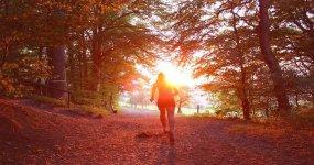Chiropractic Strategies for Running Pain