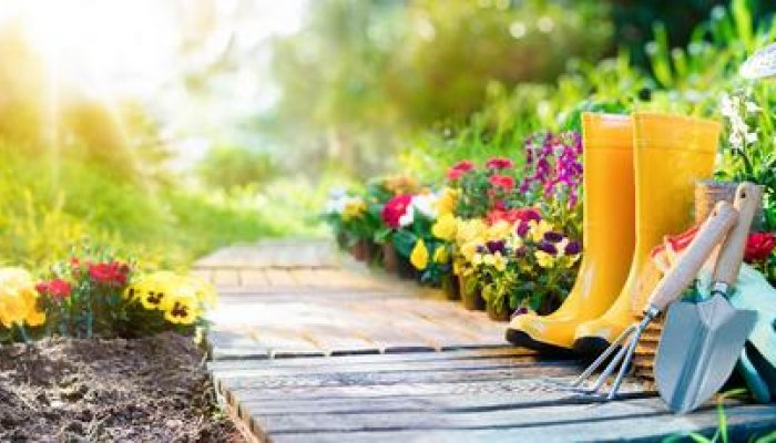 Be Smart as You Garden - Chiropractic Advice